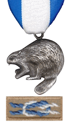 BSA Silver Beaver Award Medal and Knot Patch
